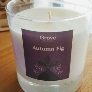 Grove collaborative Autumn Fig Soy candle